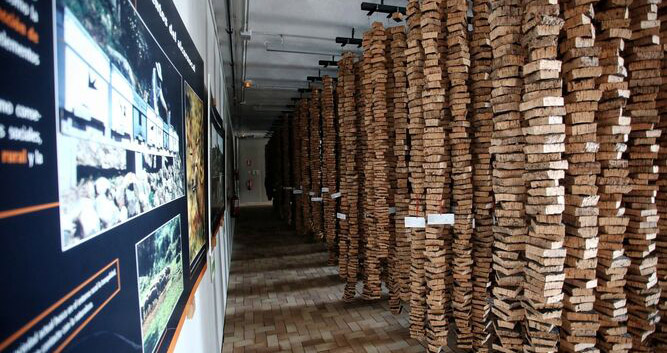 El museo andaluz del corcho
